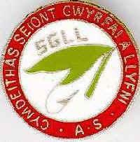 Seiont Gwyrfai and Llyfni Fishing Society
